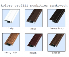 kolory moskitier ramkowych.png