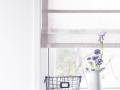 zaslona_rzymska_ANWIS_okno