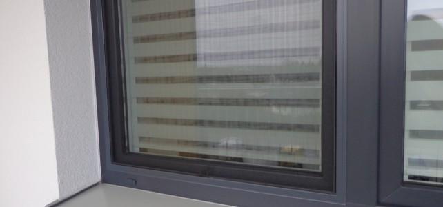Gdzie kupić tanie moskitiery na wymiar w Warszawie?