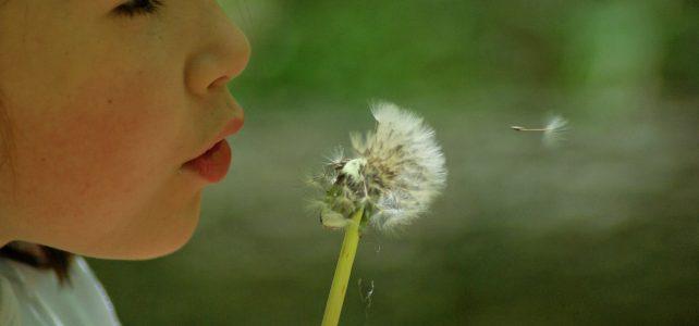 Dom alergika. Sposoby na zabezpieczenie domu przed alergenami